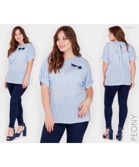 Блузка Реус (полоска голубая) 160616