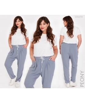 Женские брюки Бриг (серый) 2002192